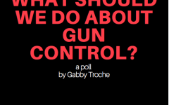 """Student say """"yes"""" to stricter gun control"""
