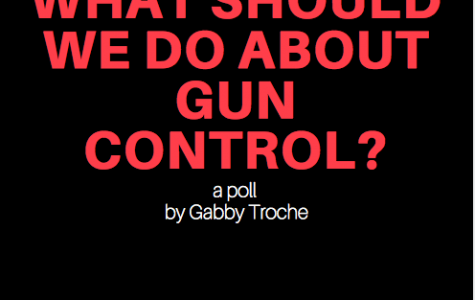 "Student say ""yes"" to stricter gun control"