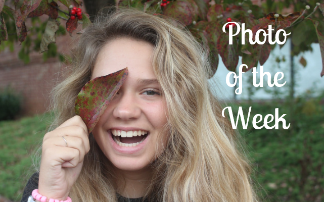 Photo of the week: autumn