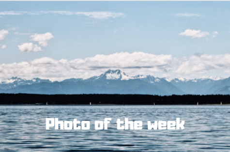 Photo of the week: people