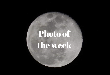 Photo of the week: photographer's choice