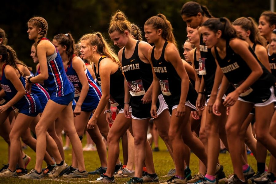 Cross-country+state+qualifiers+race+for+the+champion+title